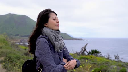 miglio : Freedom traveler asian woman standing with crossed arms at foggy beach in Big Sur California US.