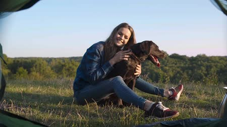 sátor : Camping. Happy Woman Traveling With Dog, Sitting Near Tent On Grass And Enjoying Summer In Nature. Stock mozgókép