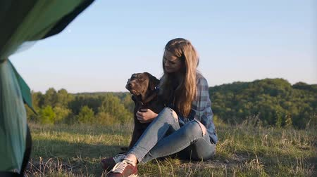 лабрадор : Camping. Happy Woman Traveling With Dog, Sitting Near Tent On Grass And Enjoying Summer In Nature. Стоковые видеозаписи