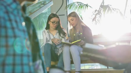 synopsis : Students Studying, Reading Notes In Book At College Stairs