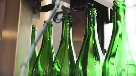 pivovar : Beer Manufacturing. Conveyor Line With Bottles, Disinfection For Beer Bottling