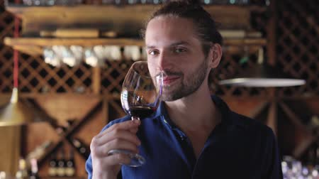 wine red : Wine Tasting. Man Smelling Drinking Red Wine At Winery Cellar Stock Footage