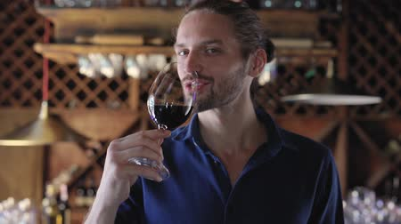 аперитив : Man Drinking Red Wine From Glass At Winery Restaurant Стоковые видеозаписи