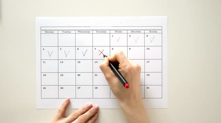 planejador : Sign the day in the calendar with a pen, draw a tick