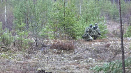 солдат : Soldiers in camouflage with combat weapons make their way outside the forest, with the aim of capturing it, the military concept Стоковые видеозаписи