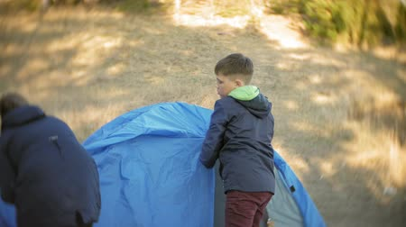 namiot : children gather a tourist tent on the nature in the forest