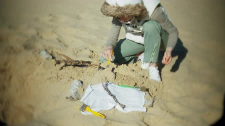jura : The woman is engaged in excavating bones in the sand, Skeleton and archaeological tools. Stock mozgókép