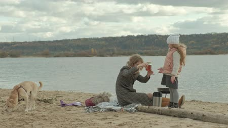 хот дог : a young woman in a coat sits on the beach by the river, the ocean, has a picnic, pours hot tea from a bottle, a brown dog is playing nearby, cold weather Стоковые видеозаписи