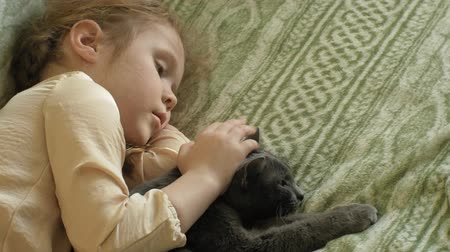pigtailler : happy girl child with blond hair and pigtails lying on the sofa stroking a gray cat Stok Video