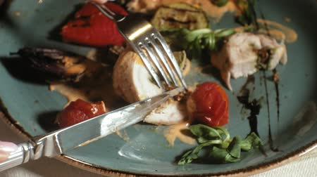 разница : close-up shooting: chicken baked in bacon with vegetables, with sauce and green salad on a blue plate