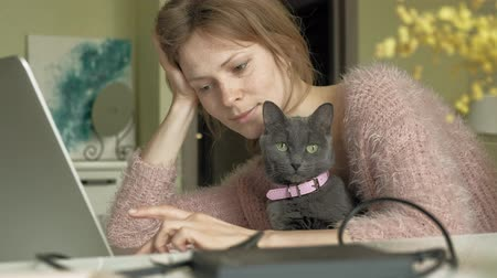 szare tło : Attractive woman with kitten using the laptop
