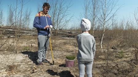 саженцы : Planting tree saplings. Forest restoration, protection of ecology.