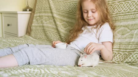 gaiola : baby girl playing with a rat