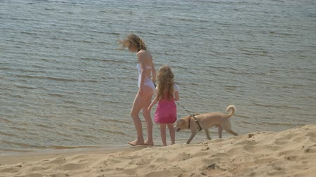 купальный костюм : Mother and daughter run along the river bank with a dog. Sunny summer day. Family holiday