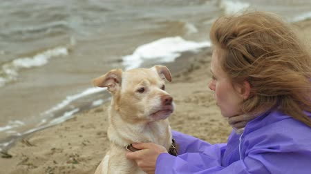 sand bank : young woman with a dog on the beach by the river Stock Footage