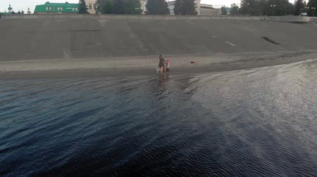 во : Mom and daughter, run, play with a brown dog labrador on the beach by the river. Aerial filming Стоковые видеозаписи