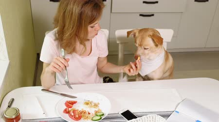 pedleri : Woman with a dog in the kitchen at the table. Breakfast. Friendship of man and pet.