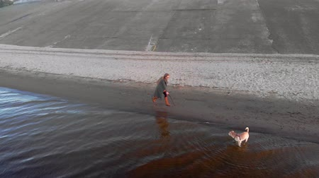 kıvırcık saçlar : Mom and daughter, run, play with a brown dog labrador on the beach by the river. Aerial filming Stok Video