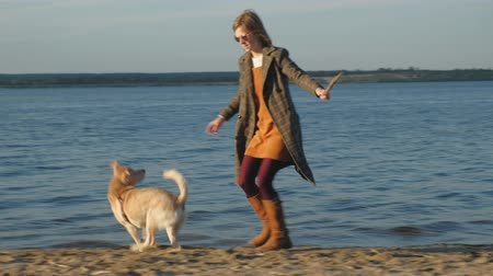 kimerül : A young woman run, play with a brown dog labrador on the beach on the bank of the river. Spring. Stock mozgókép