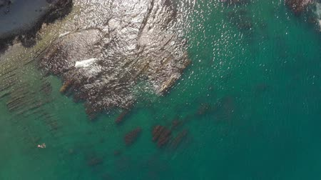 palmo : Rocky shore by the sea. Aerial shot