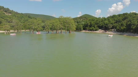 bald mountain : Mountain lake with swamp cypresses. Aerial shot Stock Footage