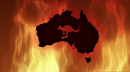 vetor : Fires in Australia. Video in motion vector illustration. Stock Footage