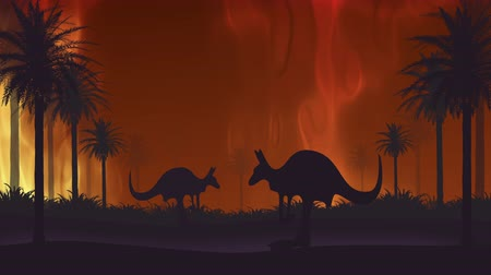 canguru : Australian fire. Kangaroos flee from forest fires