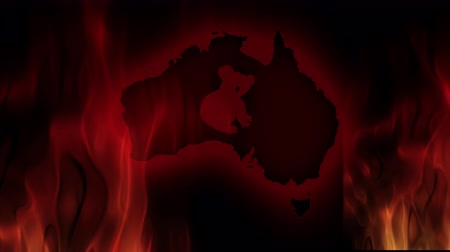 pray for australia : Fires in Australia. Video in motion vector illustration. Stock Footage