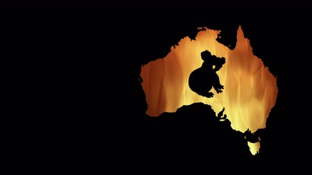 bush fire : Fires in Australia. Video in motion vector illustration. Stock Footage