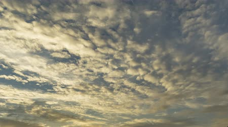 altocumulus : The sky changing colours From yellow to indigo in the evening. The movement of different layers of clouds such as Cirrocumulus, Altostratus and Altocumulus. Stock Footage