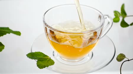 homeopati : mint tea with leaves directly above, white background