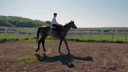 galope : young man ride horse farm animal with blue sky in background. Slow motion