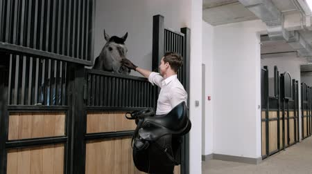 jezdecký : Professional male equestrian rider saddle up horse for dressage on training or competition