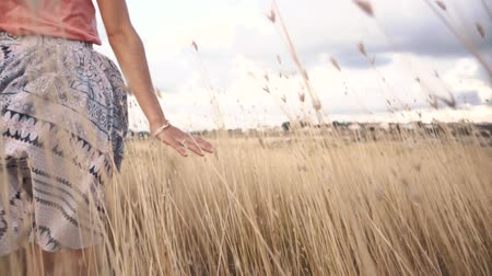 otruby : Close-up of womans hand running through field, Slow motion. Dostupné videozáznamy