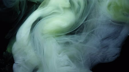 гуашь : Green and white ink in water.Creative slow motion. On a black background. Стоковые видеозаписи