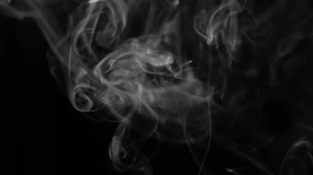 incenso : White smoke on black background