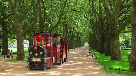 lengyelország : Green trees in park with small train