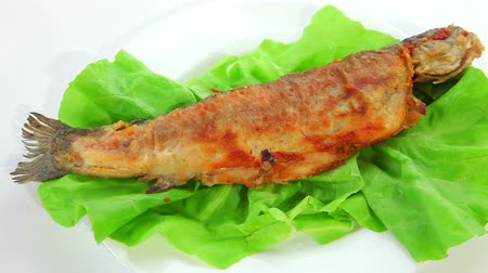 carne : Fried fish on green salad