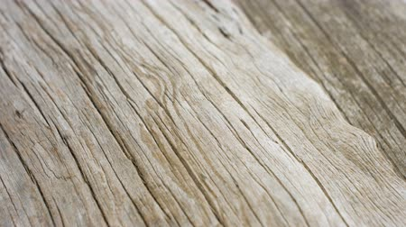 wood : Old wood texture background