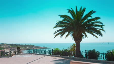 erkély : Tarragona balcony, beautiful sea view and palm tree, Costa Daurada, Spain