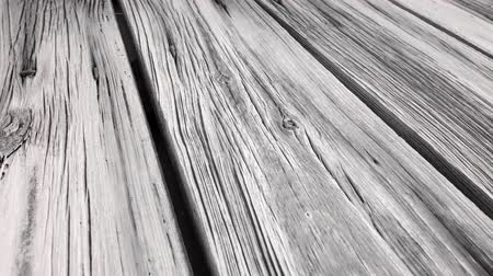 wood : 4K black and white wood texture macro