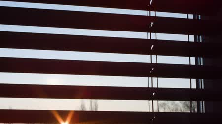 morning : Venetian window blinds morning