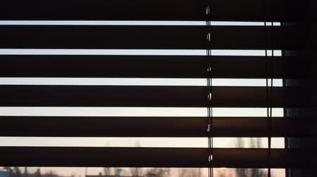persiana : Brown wooden window blinds