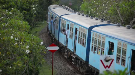 bentota : BENTOTA, SRI LANKA - May 02: Passenger train passes turn between green trees on May 02, 2013 in Bentota, Sri Lanka. Sri Lanka Railways a linking Colombo and many population tourist destinations. Stock Footage