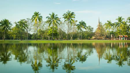 Тропический климат : Video 1920x1080 - Thailand. Sukhothai - a park with a pond and palm trees on the shore Стоковые видеозаписи