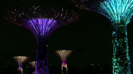 baía : SINGAPORE - DEC 31 2013: Supertree Grove at Gardens by the Bay at night. Demonstration of the light show