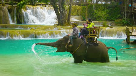 fil : LUANG PRABANG. LAOS - CIRCA DEC 2013: Cheerful tourists from different countries ride on elephants across the river