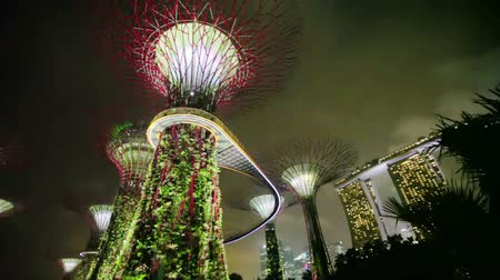 baía : SINGAPORE - CIRCA DEC 2013: Gardens by the Bay at hight. Panorama with glowing super-trees against the night sky