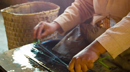 thicken : Video 1080p - Woman makes yarn from the juice from stem of lotus flower. old-fashioned way. Burma. Inle Lake