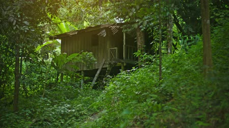 fülke : Small wooden house in the forest near the plantations of rubber trees. Thailand. Phuket
